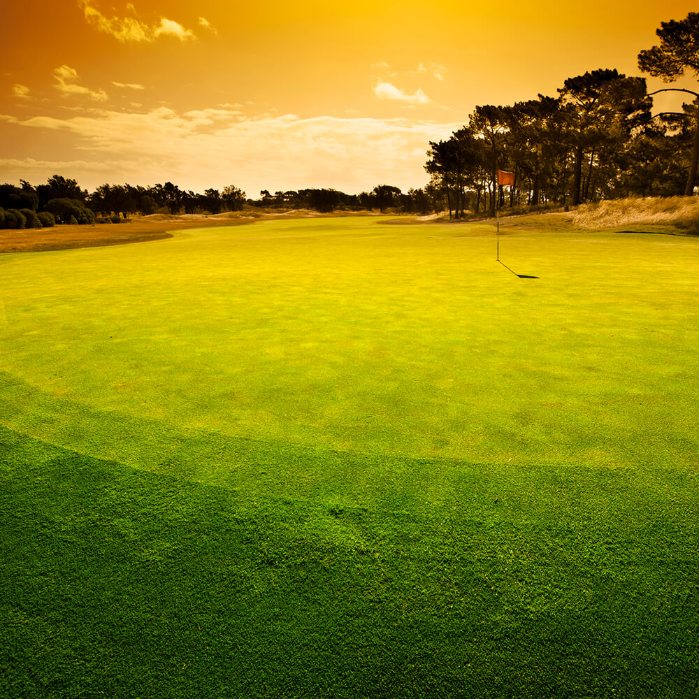 10 Top Championship Courses
